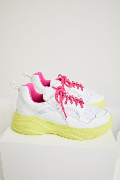 Sneaker-Lima
